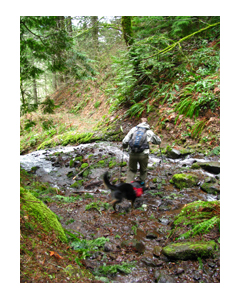 Photo: Brad fording the creek with Timmy the dog; by Dawn Rasmussen