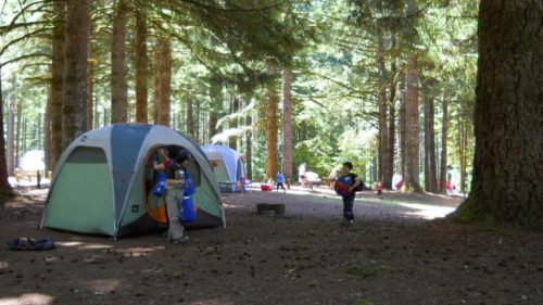Rv Parks Columbia Falls Mt Camping Central Montana Best