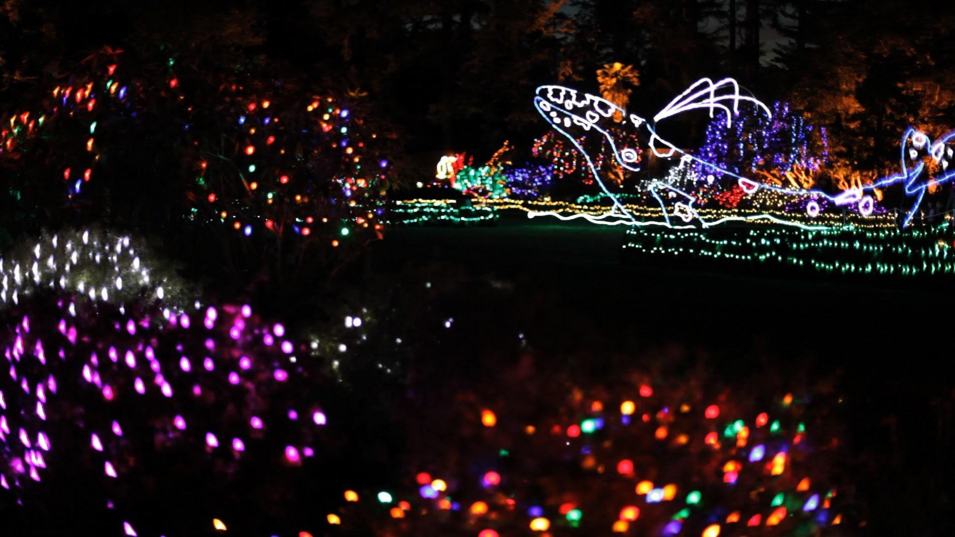 Holiday Light Extravaganzas in Oregon - Travel Oregon