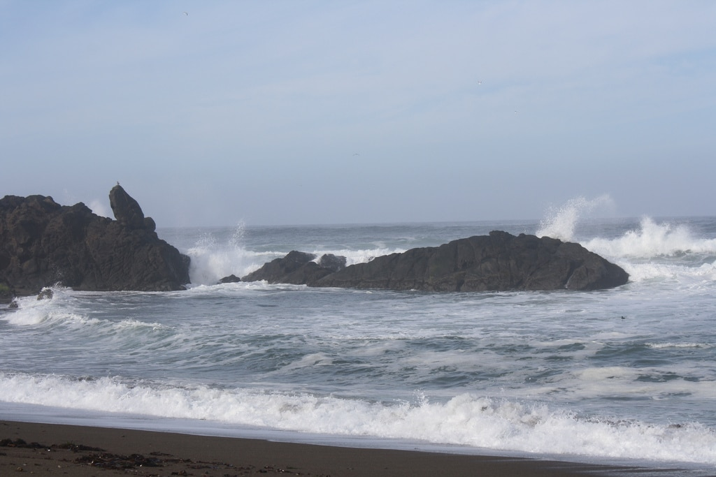 Fogarty Beach...a perfect place for birdwatching, waves crashing and tidepooling.