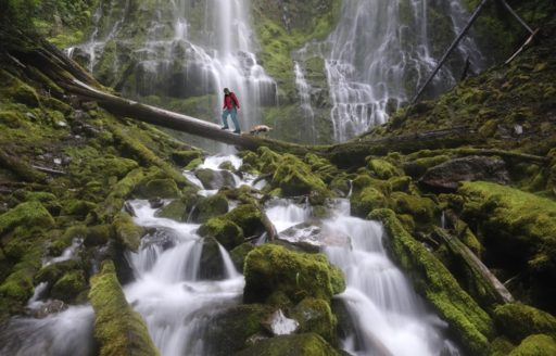 Take in the tranquility of Proxy Falls.