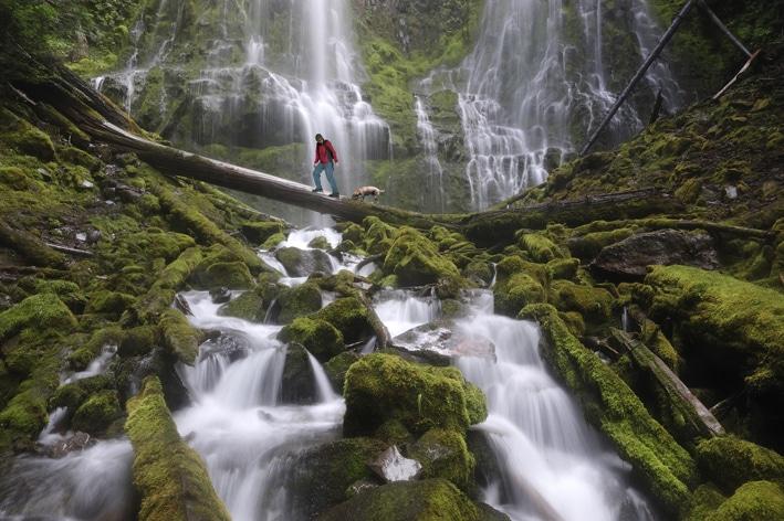 Proxy Falls, a tranquil escape.