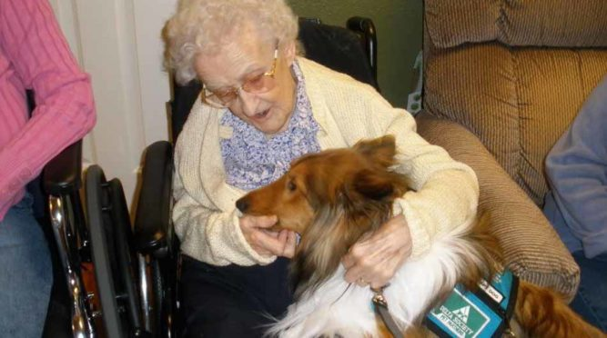 """Chase is a certified """"therapy dog"""" and loves making house calls."""