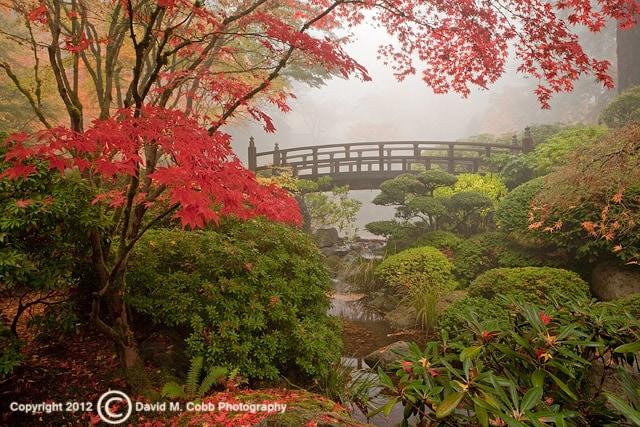 Capturing Oregon The Portland Japanese Garden Travel Oregon