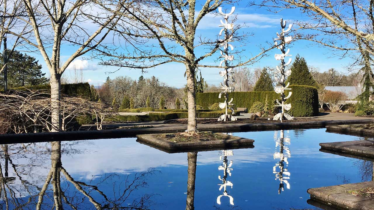 Leafless winter trees reflect in blue pools at the Oregon Garden.