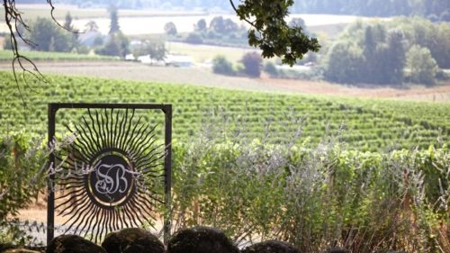 Sokol Blossor was the first LEED-certified winery in the U.S., thanks to its USDA organic farming certification and thoughtful business practices. (Photo credit: Jenny Hill)