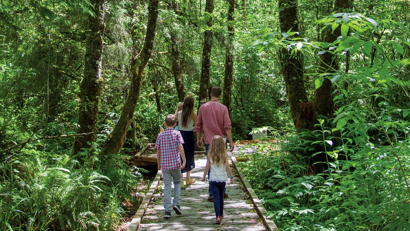 A family walks down a boardwalk in the coastal forest.