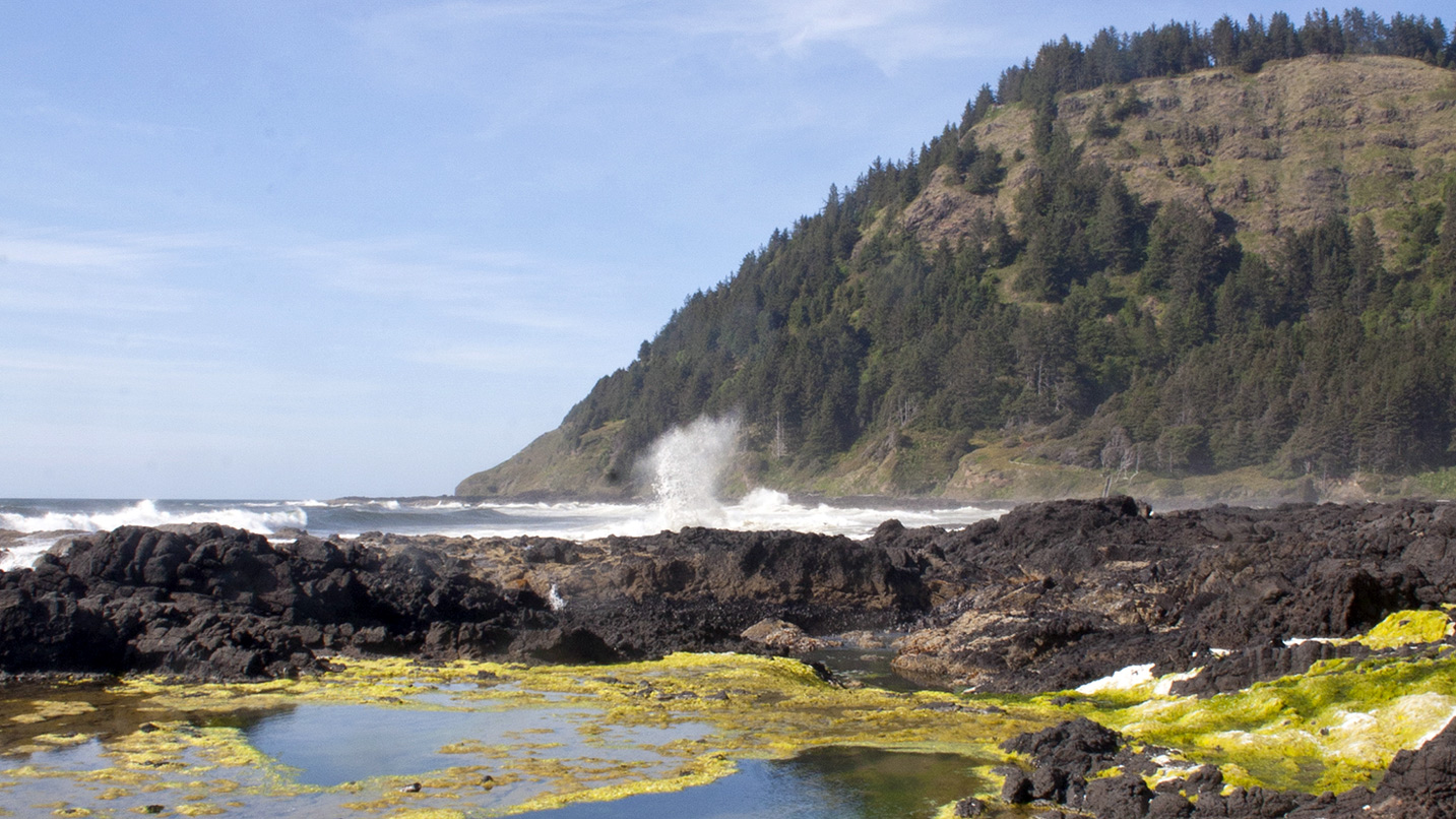 Seawater sprays up at the Oregon Coast.