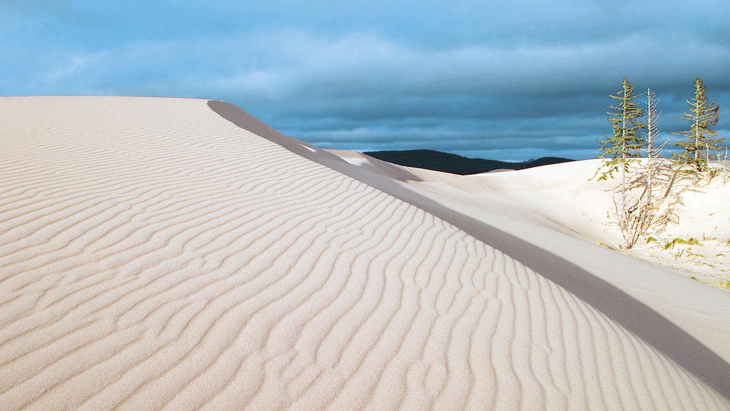 The sand at the Oregon Dunes makes a wave-like shape.