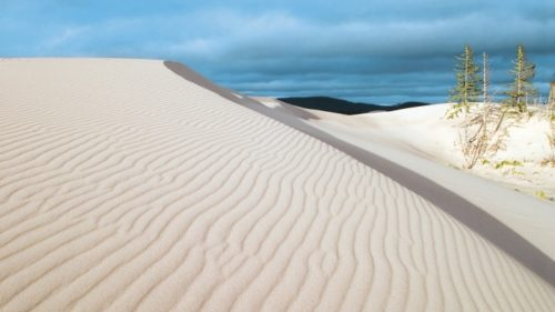 Between Florence and North Bend, the Oregon Dunes dominate the coastal landscape for more than 40 miles.
