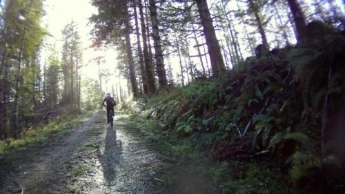 The Oregon Coast Gravel Epic will challenge even the strongest riders on a 73-mile course through vistas of deep forest to the east and the sparkle of the ocean to the west.