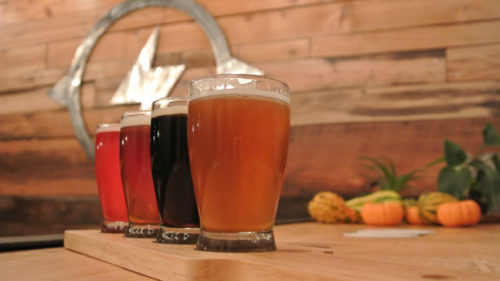Thunder Island currently produces a number of tasty beers – IPA, Kolsch, Pale Ale, Scotch Porter and Mosaic — on a two-barrel system.