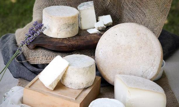 willamette valley cheese trail travel oregon