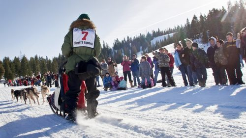 The start of the Eagle Cap Extreme Sled Dog Race is always an exciting winter event in Wallowa County.