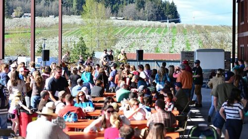 Get taste of Oregon cider at the second annual Hood River Hard Pressed Cider Fest on Saturday, April 11. (Photo credit Adam Lapierre / Hood River News)