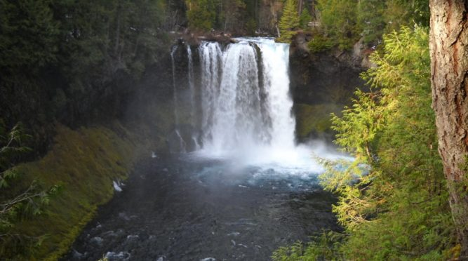 Sahalie and Koosah Falls