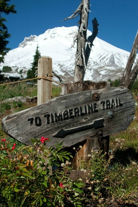 Timberline Trail Mt. Hood