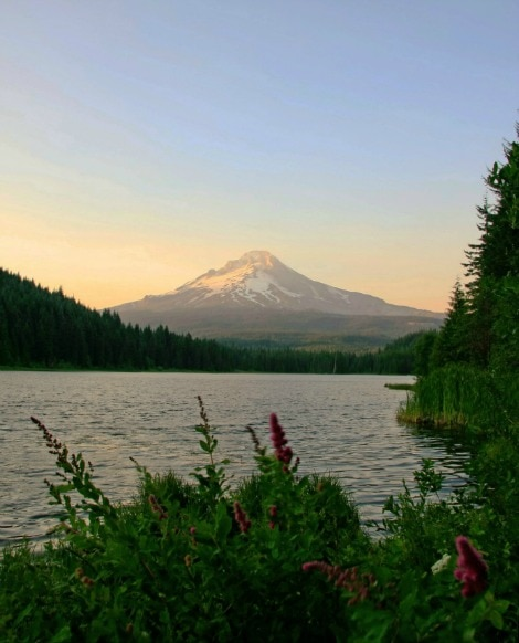Beautiful Places In Portland Oregon: Where's The Best View Of Mt Hood?