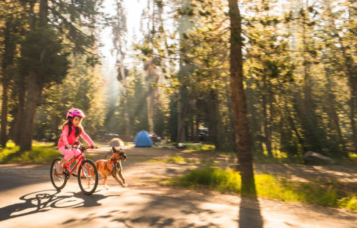 Oregon Campgrounds Beachfront Riverside Or Mountain View