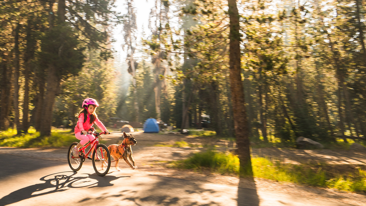 A young girl rides her bike through a campground with her dog running beside her