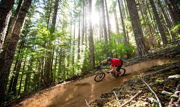 A mountain biker descends a narrow dirt trail