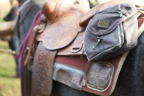 horseback6