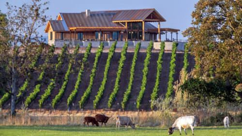 Tucked between the Rogue River and the famous Upper Table Rock, Kriselle Cellars produces one-of-a-kind wines.
