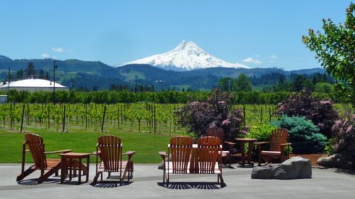 """Come for the wine, stay for the views"" is the motto for Mt. Hood Winery, voted best Oregon winery in 2016 by Northwest Wine Press."
