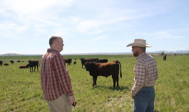 Chef Jason Stoller Smith and rancher Keith Nantz survey cows in Maupin