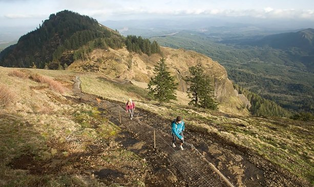 5b546dee53 ... A rewarding hike up Saddle Mountain — the highest point in northwest  Oregon — will make you feel like your head's in the clouds.