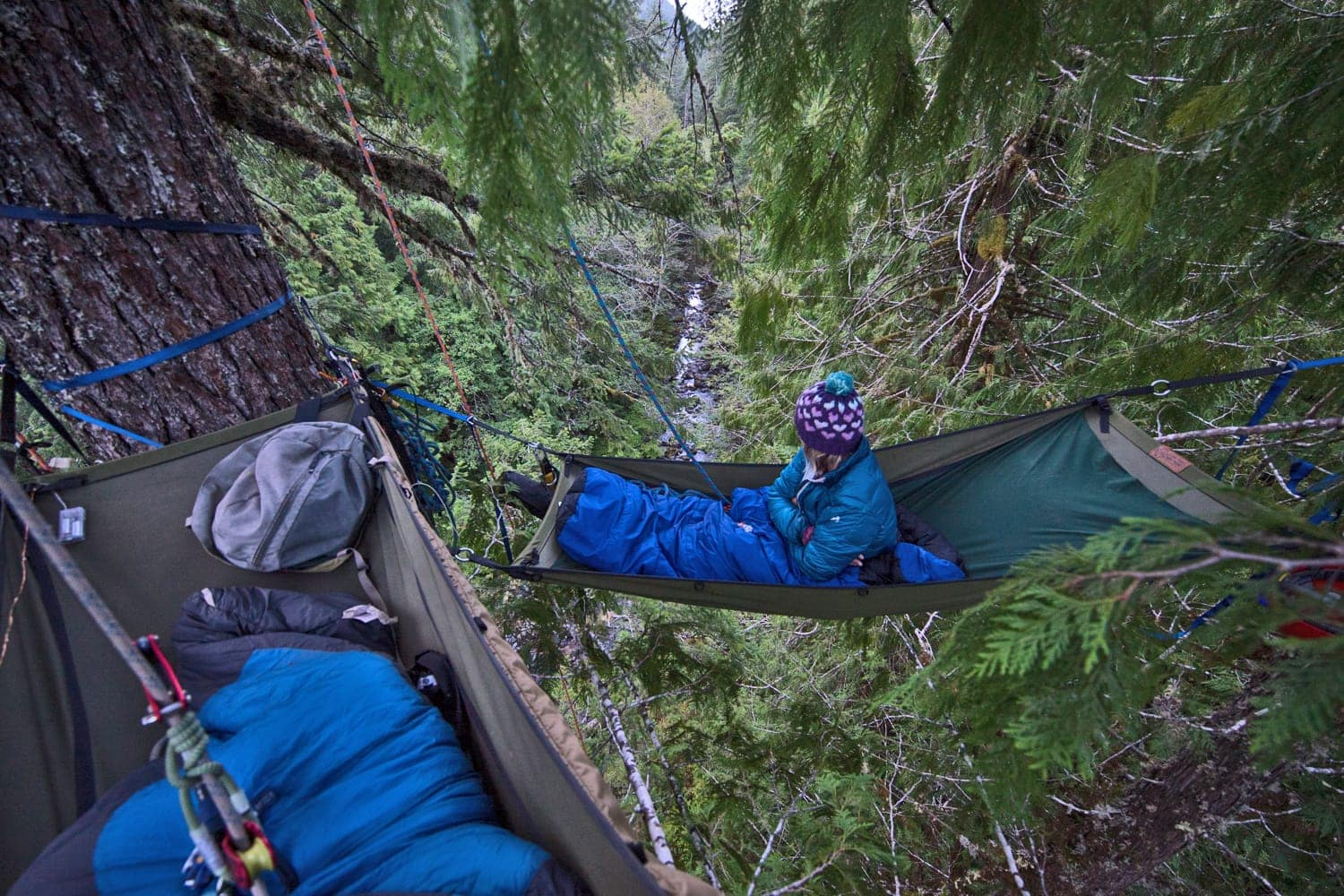 Waking up in the trees