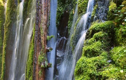 Rather than a gushing cascade, Columnar appears to flow from columns of rock and will change your definition of a waterfall. (Photo credit: Adam Sawyer)