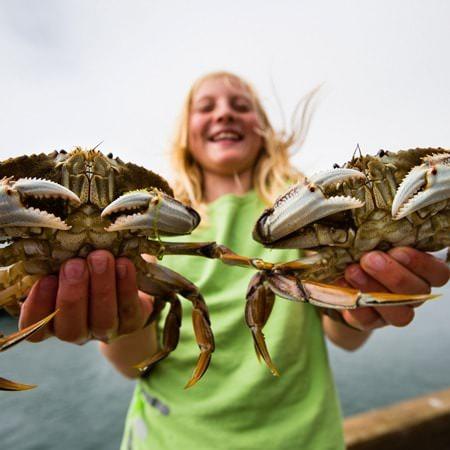 CoastCoop_Crab_450x450px