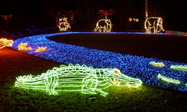 zoolights transforms the oregon zoo into a sparkly winter wonderland with scenes created from 16 million lights photo credit oregon zoo