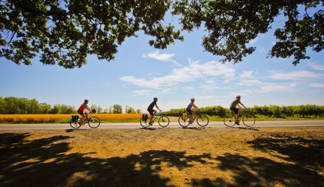 Four cyclists on the Wilammette Valley Scenic Bikeway