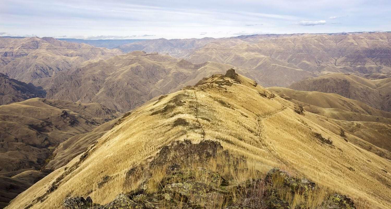 Eureka Viewpoint