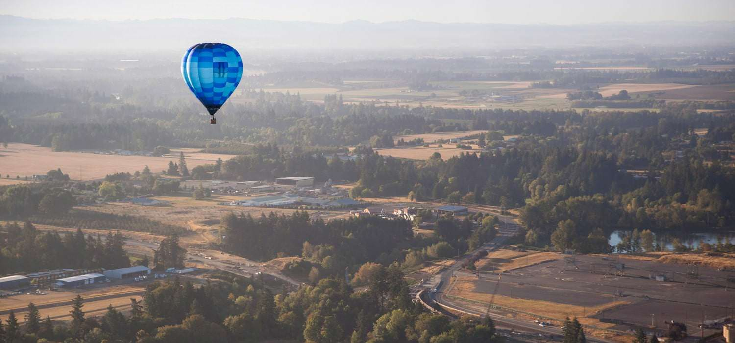 A blue hot air balloon floats above trees and vineyards.