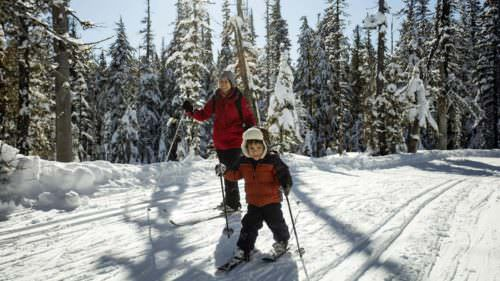 Mom and toddler cross-country skiing