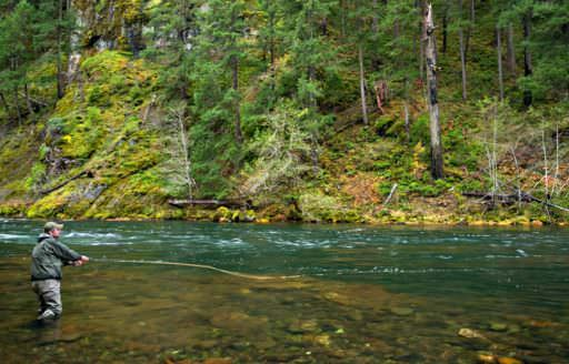 Umpqua River by Tim Giraudier
