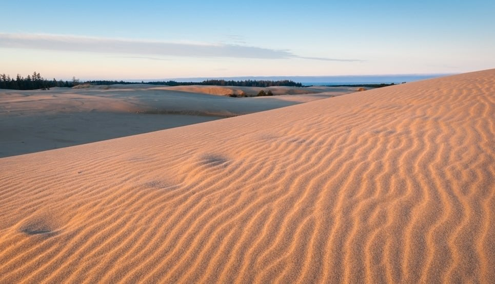 A Local's Guide to the Oregon Dunes - Travel Oregon