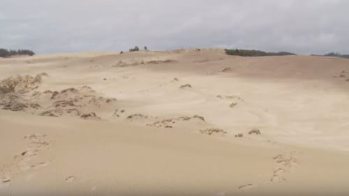 a local s guide to the oregon dunes travel oregon