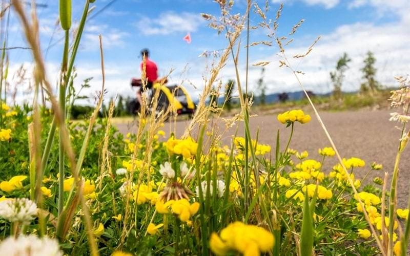 Cycling through Corvallis on the Willamette Valley Scenic BIkeway