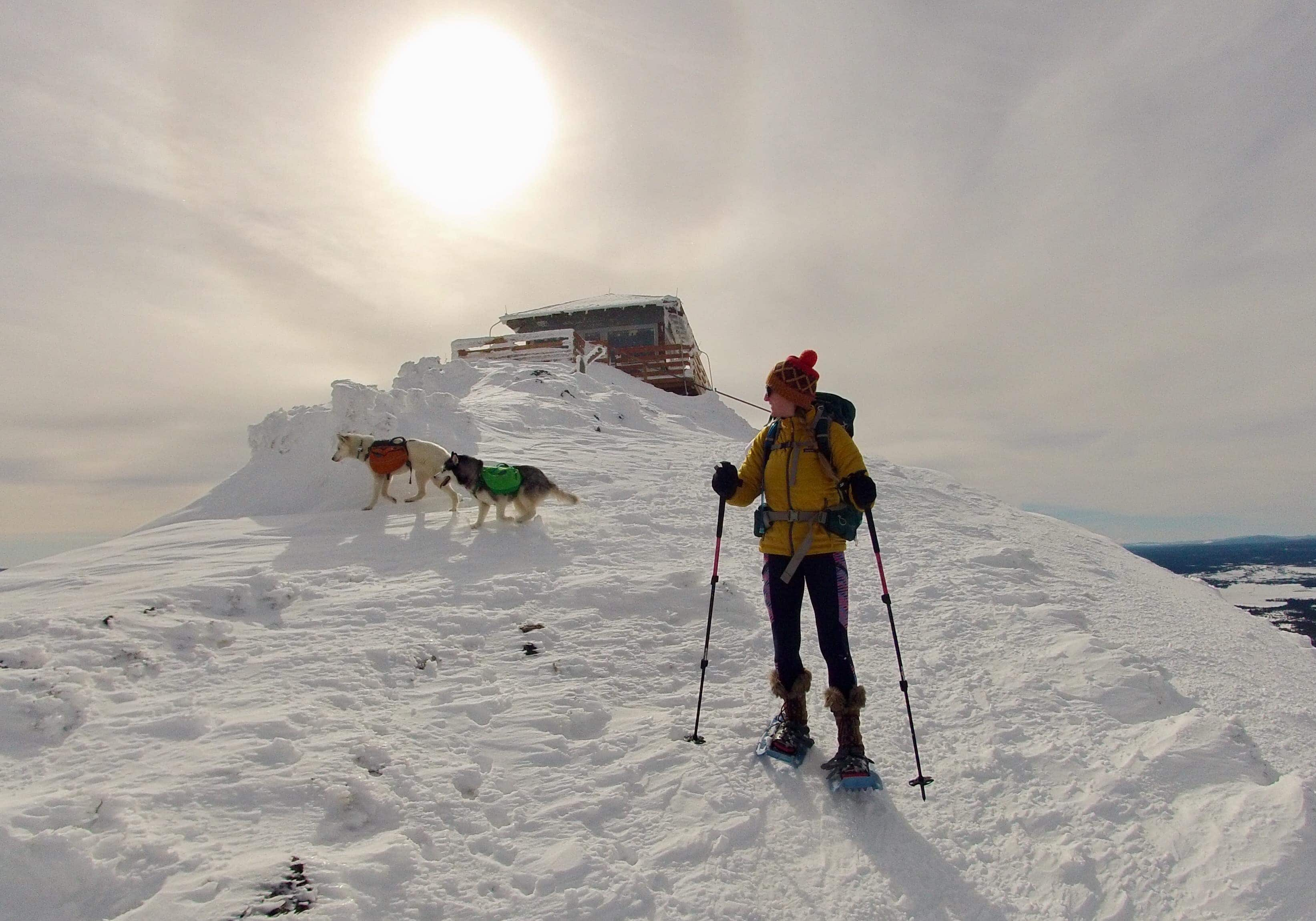 Girl on skis on snowy hill below lookout, dogs behind her