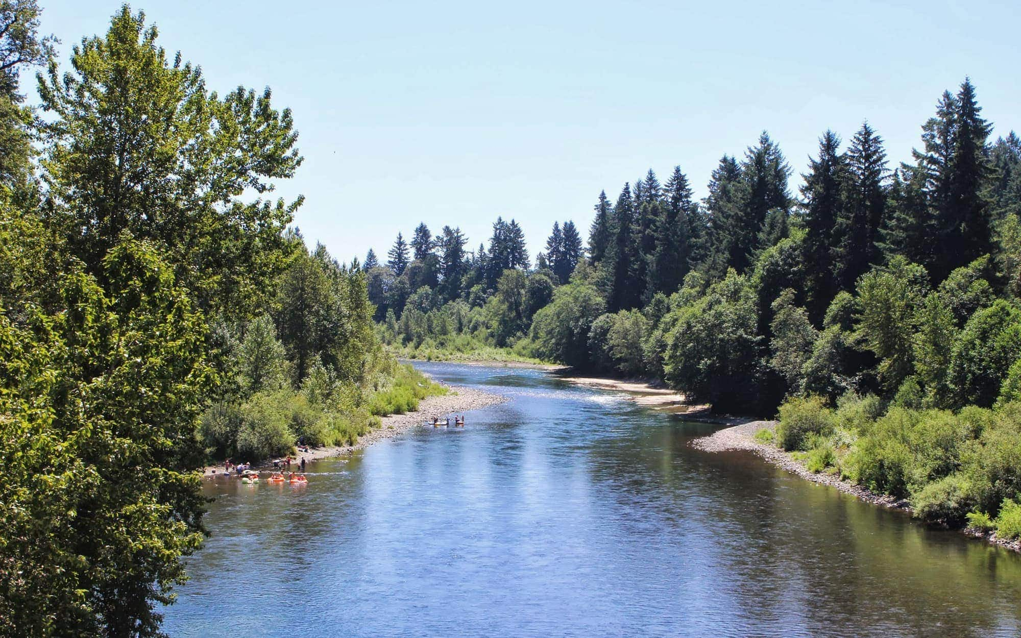 View of the Clackamas River on sunny day
