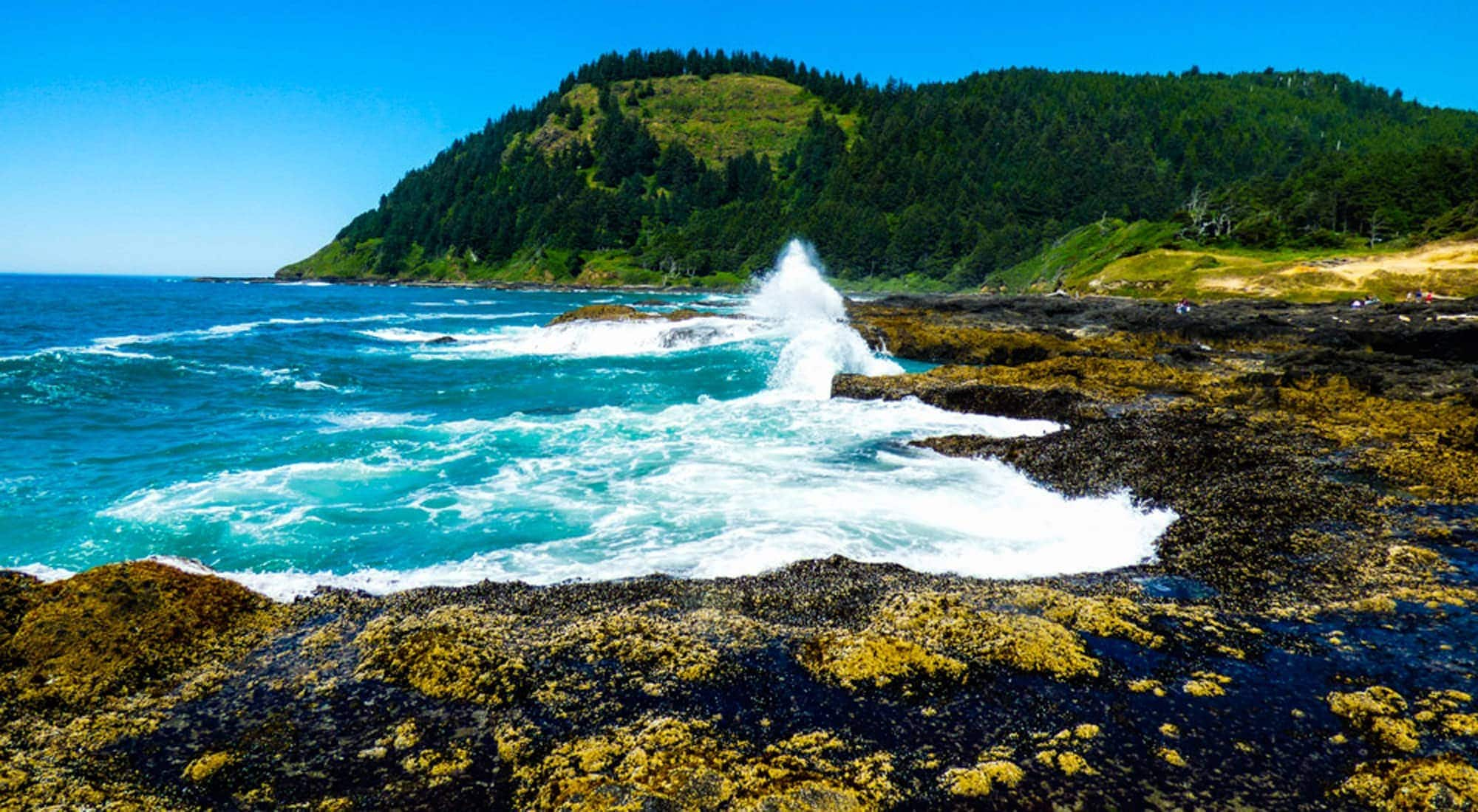 Rocky section of Oregon Coast