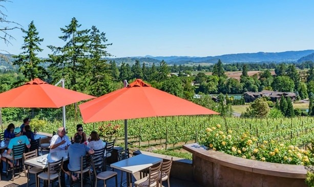 Patio view from Cooper Ridge Vineyard