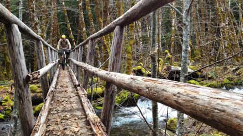 Mountain biker pedals down cyclist bridge on McKenzie River Trail