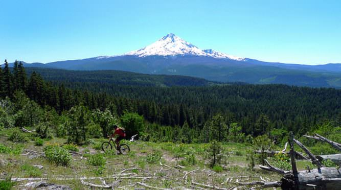 Mountain biker pedals past view of Mt. Hood.