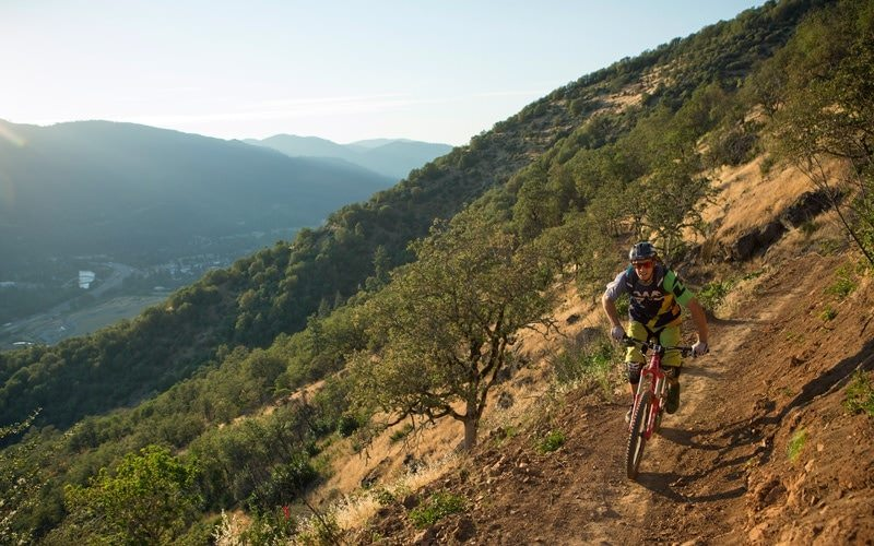 Mountain biker pedals down Arm Bar Mountain Bike Trail.