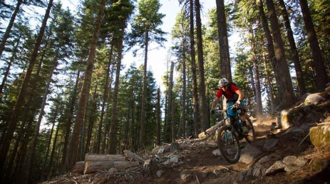 Mountain biker speeds down Mt. Ashland trail.